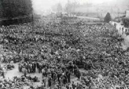 Rheinwiesenlager 1945 Teil 3 Deutsche Leichen Wurden